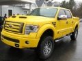 2014 Ford F 150 Tonka Front Left Side
