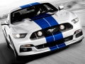 2016 Mustang Shelby GT500 Front Grill
