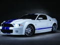 2016 Mustang Shelby GT500