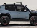 2016 Jeep renegade Special Edition