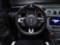 2016 Mustang Shelby GT350 Interior