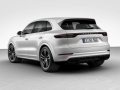 2019 Porsche Cayenne rear left side