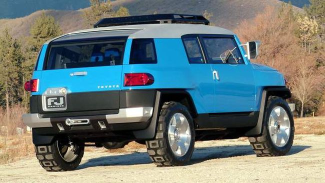2016 Toyota FJ Cruiser Rear Right Side